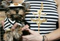Pets-fashion-week-A-dog-a-012