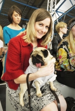 stephanie-stylist-fashion-dog
