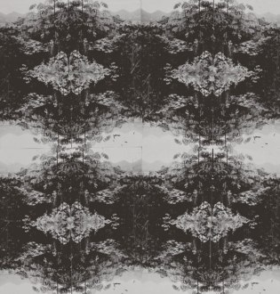 horst_patterns