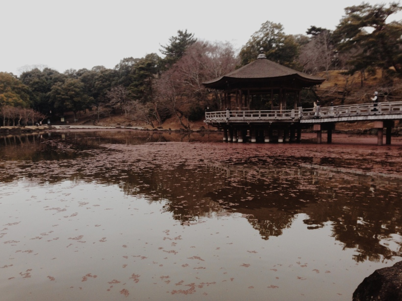 This is a pagoda overlooking the water in Nara, where the deer walk!